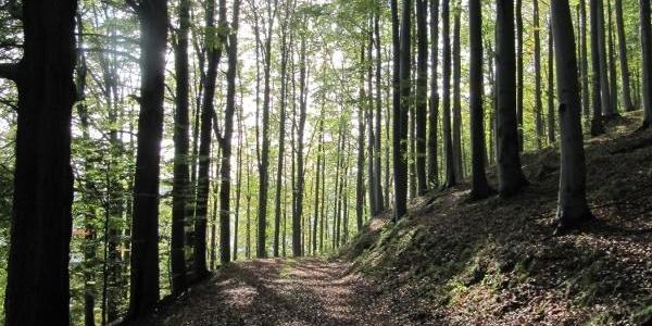 Auf dem Kammweg zum Stösserfelsen