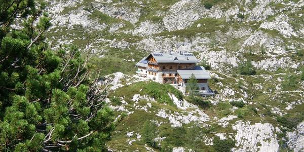 Laufener Hütte-Tagweide-First
