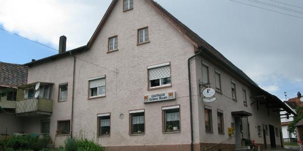 """Gasthaus """"Grüner Baum"""", Briel"""