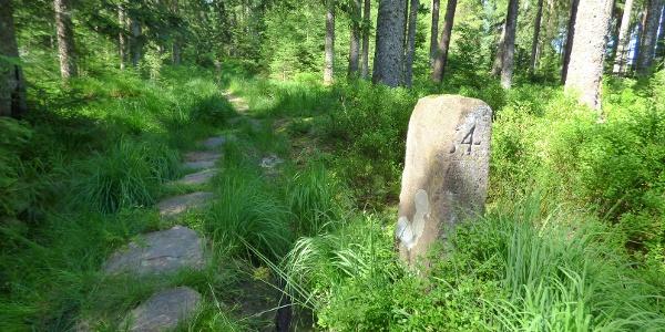 Grenzweg zwischen Mooswiese und Auerhahnköpfle