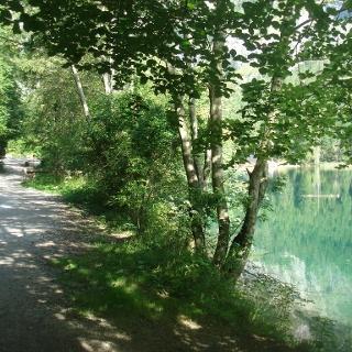 Radweg entlang des Ufers des Leopoldsteinersees
