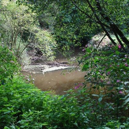 Der Brunnenpfad bietet Erholung in der Natur