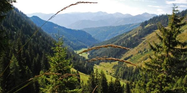 Blick zurück auf die Achneralm vom Aufstieg auf den Brunnecksattel