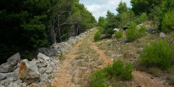 Auf verlassenen Weg Richtung markiertem Wanderweg