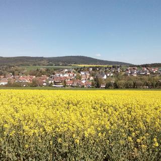 Blick auf Münster im Frühling
