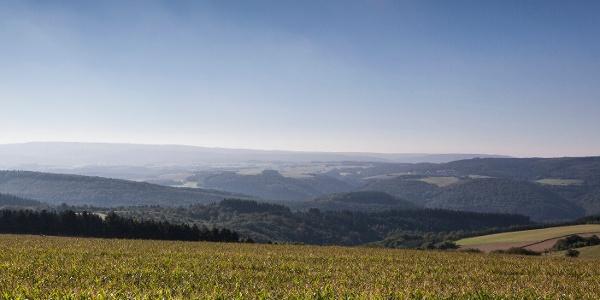 Hunsrücklandschaft bei Morbach