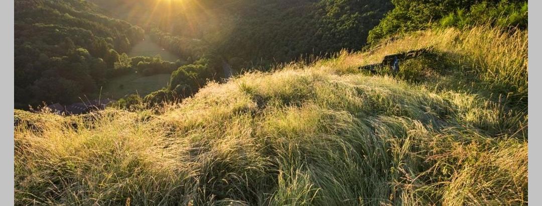 Naturschutzgebiet Mittagsfels