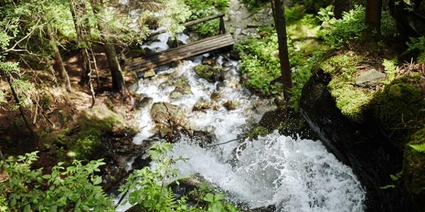 Wildwasser - eine Naturschönheit