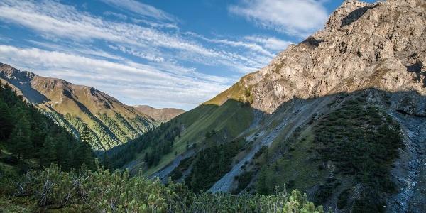 Im Aufstieg durch die Legföhrengürtel in der Val Müschauns