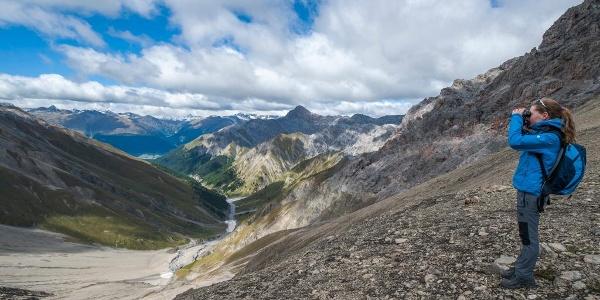 Im Abstieg von der Fuorcla Trupchun aus lassen sich im Sommer immer wieder Rothirsche und Steinböcke beobachten.