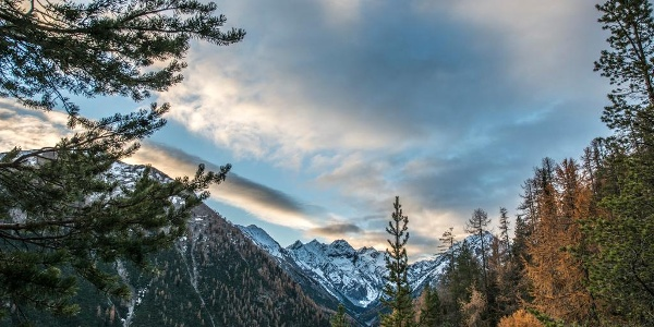 Herbstliche Morgenstimmung eingangs Val Trupchun. Im Talgrund der Piz dal Diavel.
