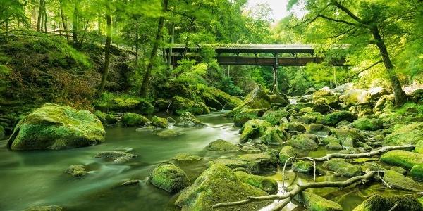 Irreler Wasserfälle mit Brücke