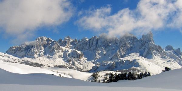 View over Pale di San Martino