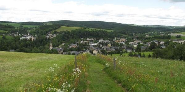 Blick auf Neuhausen