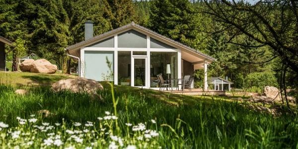 Ihr Ferienhaus im Thüringer Wald am Rennsteig