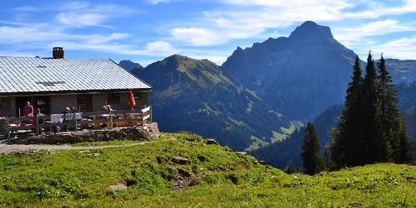 Alpe Innerer Stierhof – mit Blick auf den Großen Widderstein