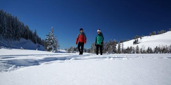 Winterwanderer