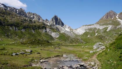 Auf der Alpe Campolungo