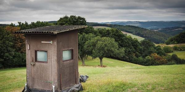 Ab km 17 gibt es eine Reihe sehr kreativer Hochsitze zu sehen...