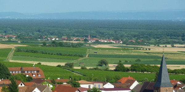Unweit der französischen Grenze liegen die Orte Schweigen und Schweighofen.