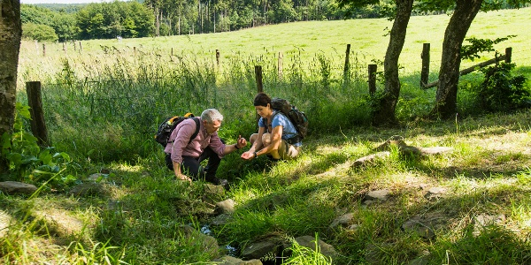 The little trickle leaving the spring pond ist the start of the river Lahn - stage 1