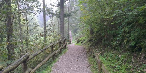 Strecke Molveno-Andalo