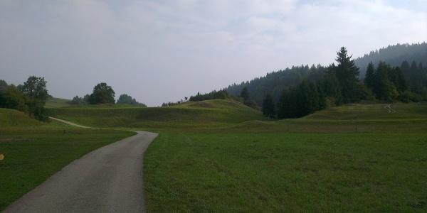 Panorama, Maso Toscana