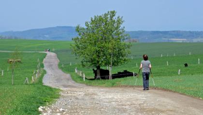 Weg von Dittersdorf nach Neudörfel