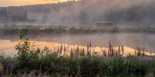 Romantischer Sonnenaufgang im Trauntal