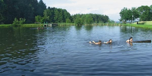 Badeteich Rörndlwies