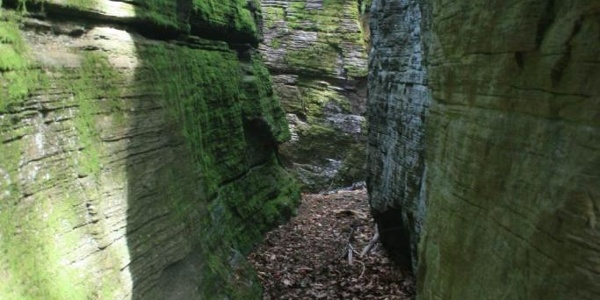 Naturdenkmal Schwoagbauerfelsen