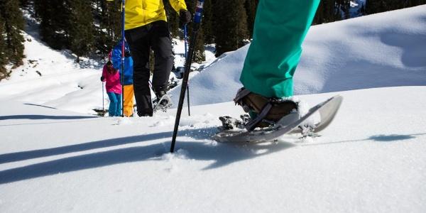 Symbolbild, Schneeschuhwandern