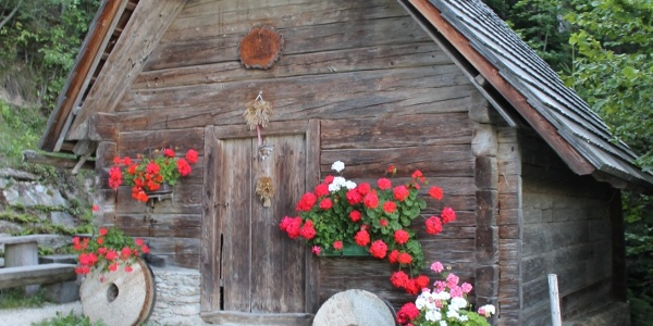 Feichtenhofer Mühle