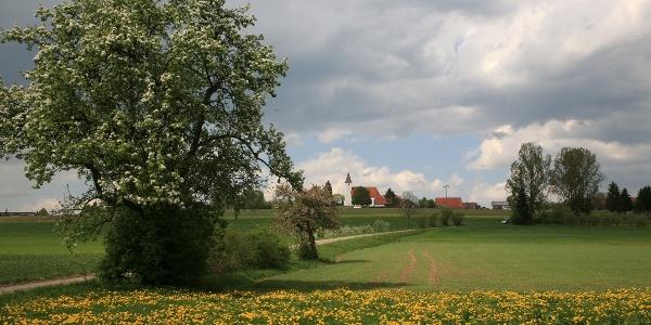 Waldmeisterrunde - Weilerstreußlingen