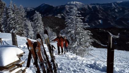 Vor der Julius-Seitner-Hütte: Blick zum Schneeberg