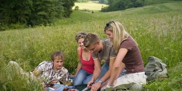 Picknick in der Wiese