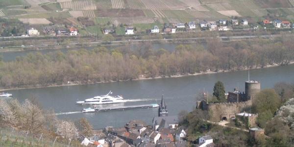 Ausblick auf die Heimburg und den Rhein