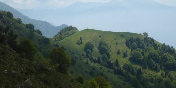 """Monte Vender from the trail SAT 445 """"Sentiero della Regina"""""""