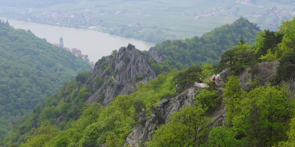 Auf dem Vogelbergsteig: Blick auf Dürnstein