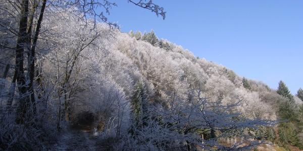 Der pure Wahnsinn, die Natur mit stahlblauem Himmel