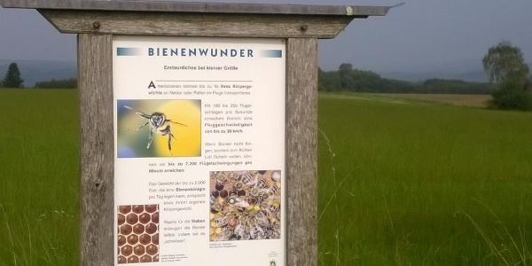 Bienen-Erlebnis-Pfad