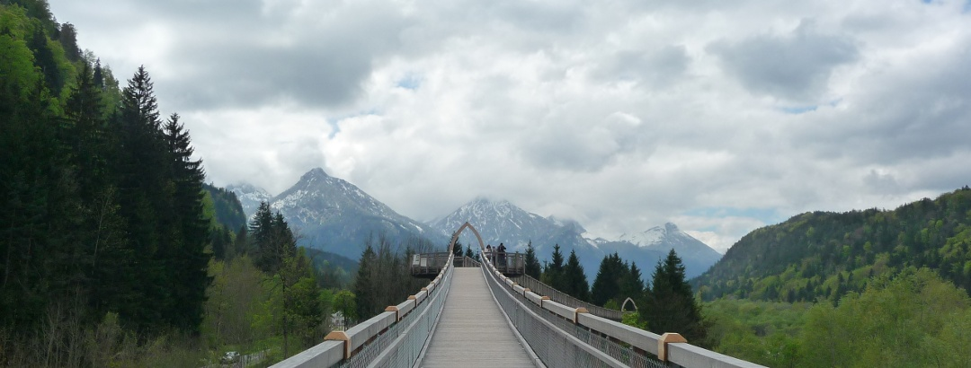Der Baumkronenweg im Walderlebniszentrum Ziegelwies