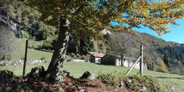 Malga Pranzo, starting point of the hiking