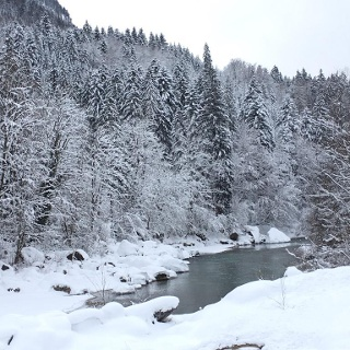 Josefsallee Unken, Salzburger Saalachtal
