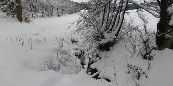 Winterwanderung in der Kuckucksuhle