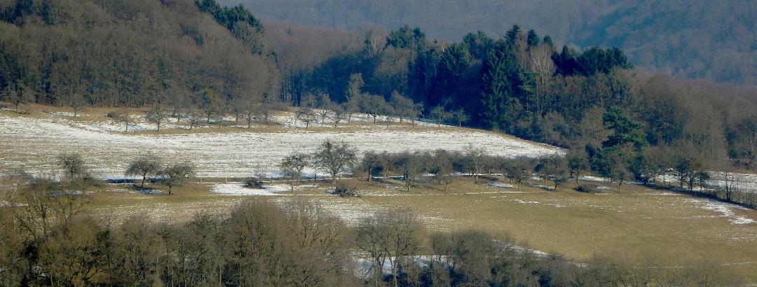 Wir blicken in das Dattenbachtal, oben sind Teile von Eppenhain zu erkennen