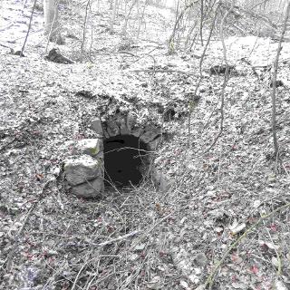 Reste Keller Ruine Bruderhaus