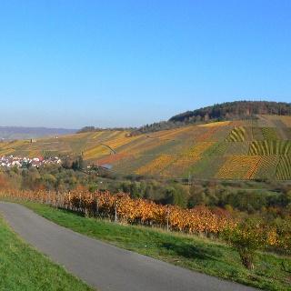Stetten mit Y-Burg und Sieben-Linden