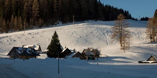 Auf der Seeberg Alpe