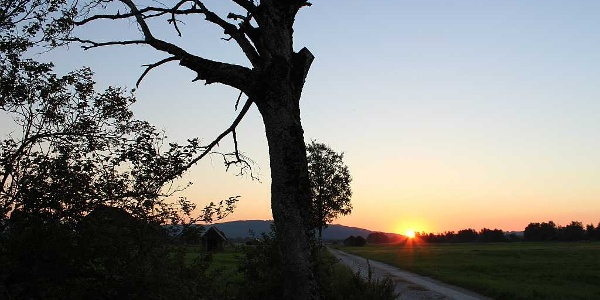 Sonnenuntergang am Moosrundweg
